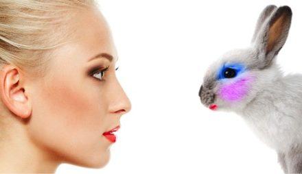 Australia bans using animal testing data for cosmetics