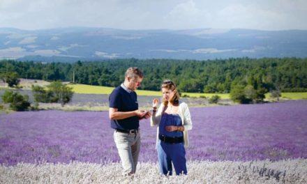 Symrise partners CRIEPPAM in Lavender farming study