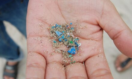 EU microplastic phaseout could prevent the release of 400,000 tonnes