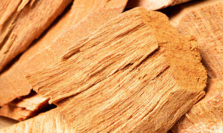 BASF launches a renewable alternative to Sandalwood